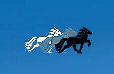 Ferienlager – Islandpferdehof Rapoldi